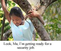 Tree security