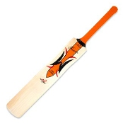 Cricket_bat